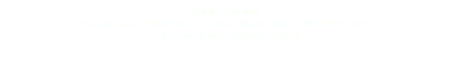 Knight Stationary 2018 American Advertising Federation – North Dakota, Silver ADDY Award Sales & Marketing Stationary Package